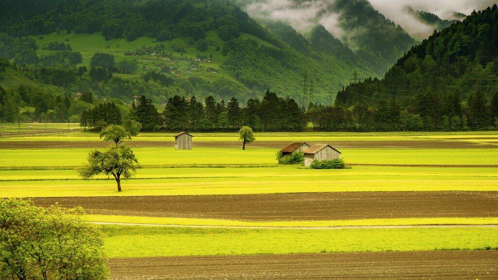 gambar alam pertanian
