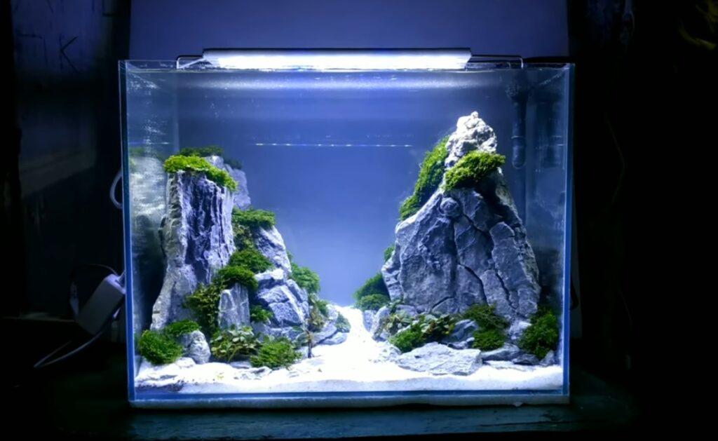 gambar aquascape iwagumi simple minimais