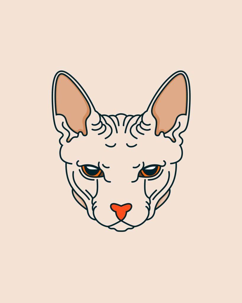 wallpaper wa kucing dan anjing